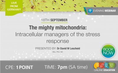 The mighty mitochondria: Intracellular managers of the stress response